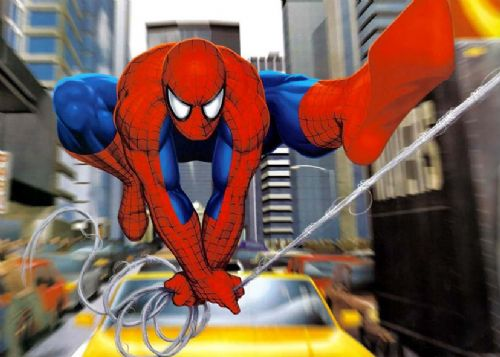SPIDER MAN - STREET canvas print - self adhesive poster - photo print